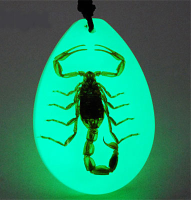 Scorpion Necklace Glow in the Dark Insect Pendant